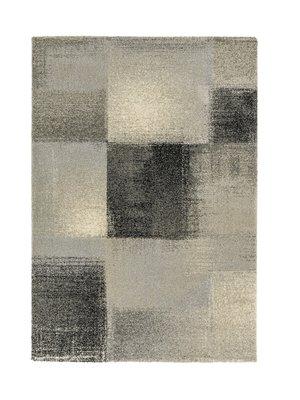 Vloerkleed modern Rosalia Grijs 151040